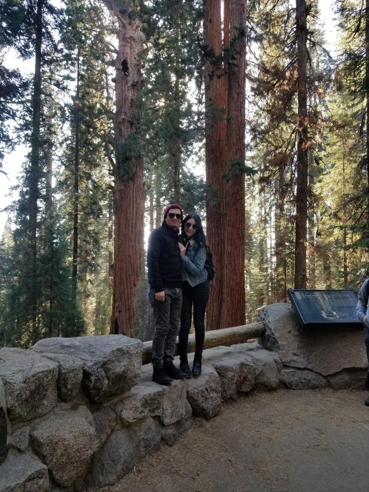 General Sherman Tree, Sequia National Park, California, USA www.weareinfinite.blog